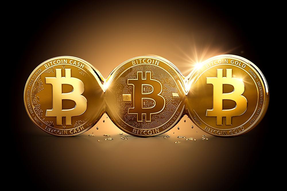 初心者はチェック!ビットコインキャッシュの特徴と将来性について